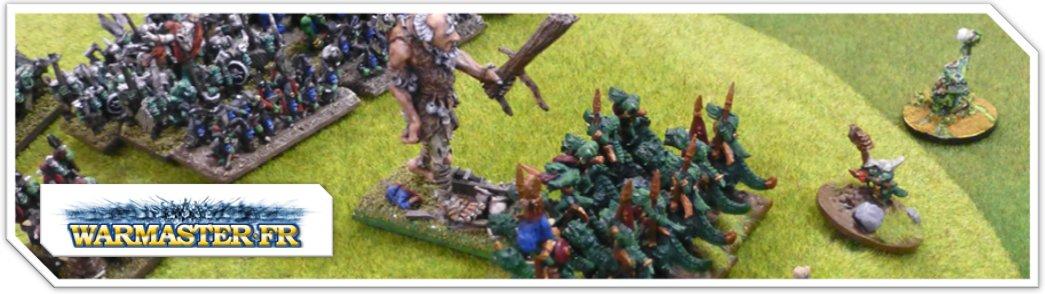 [Vente] Armée Orc & Gobelin - Page 2 Banniere_09-4c2fc1d