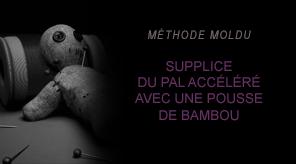 Comment neutraliser un Moldu en deux leçons - Page 2 Moldu07-51b4796
