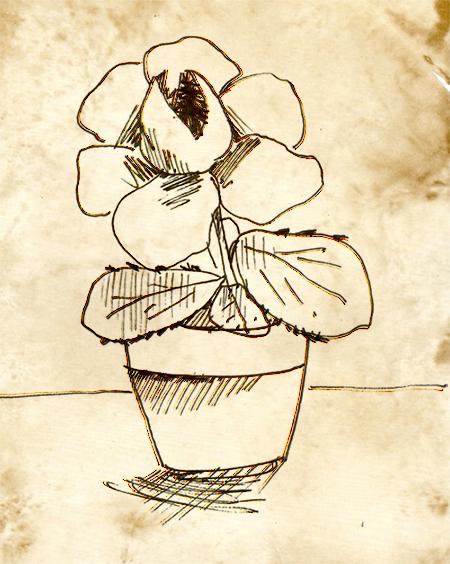 [11 Septembre 1997] Le Géranium Dentu Botanique-507c171