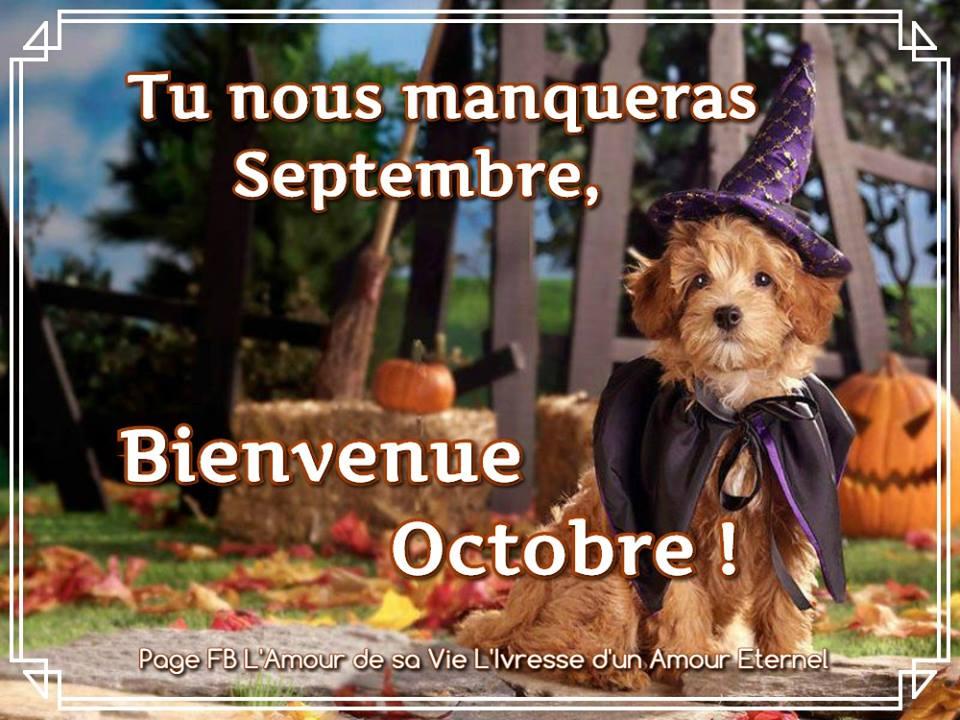 Septembre se montre souvent comme un second et court printemps  - Page 14 Octobre_014-52f6aea