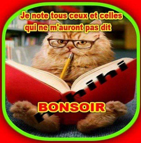 BONNE SOIRÉE DU VENDREDI 31 OCTOBRE Bonsoir-1--485cf61