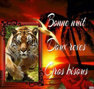Bonjour / Bonsoir d' AOUT - Page 5 De797b3f-52f431f
