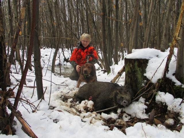 la saison démarre moyennement 12-fevrier-la-foret-le-roir-53f16ba
