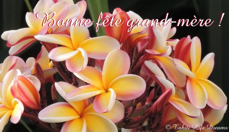 BONNE JOURNÉE DE DIMANCHE Bonne-fete-grand-...opyright-4a2644e