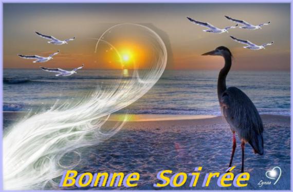 BONNE SOIREE DE MERCREDI Bonne-soiree-bonn...seau-img-471f332