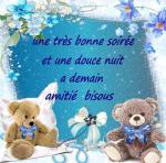 bonjours  bonsoirs du mois  juin  - Page 2 Bonne-soiree_019-47571ef