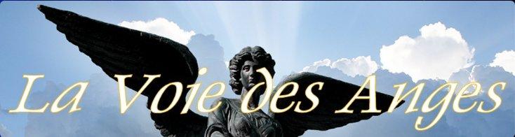 Les anges E-et-cie-la-voie-des-anges-558c8a7