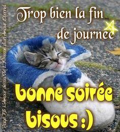 Bonjour / Bonsoir d' AOUT - Page 5 F3076db9a2f25482a...idi-coco-52edaf9