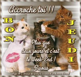 Bonjour / Bonsoir d' AOUT - Page 4 7d3078b16bbc03225...-petites-52ea5b0