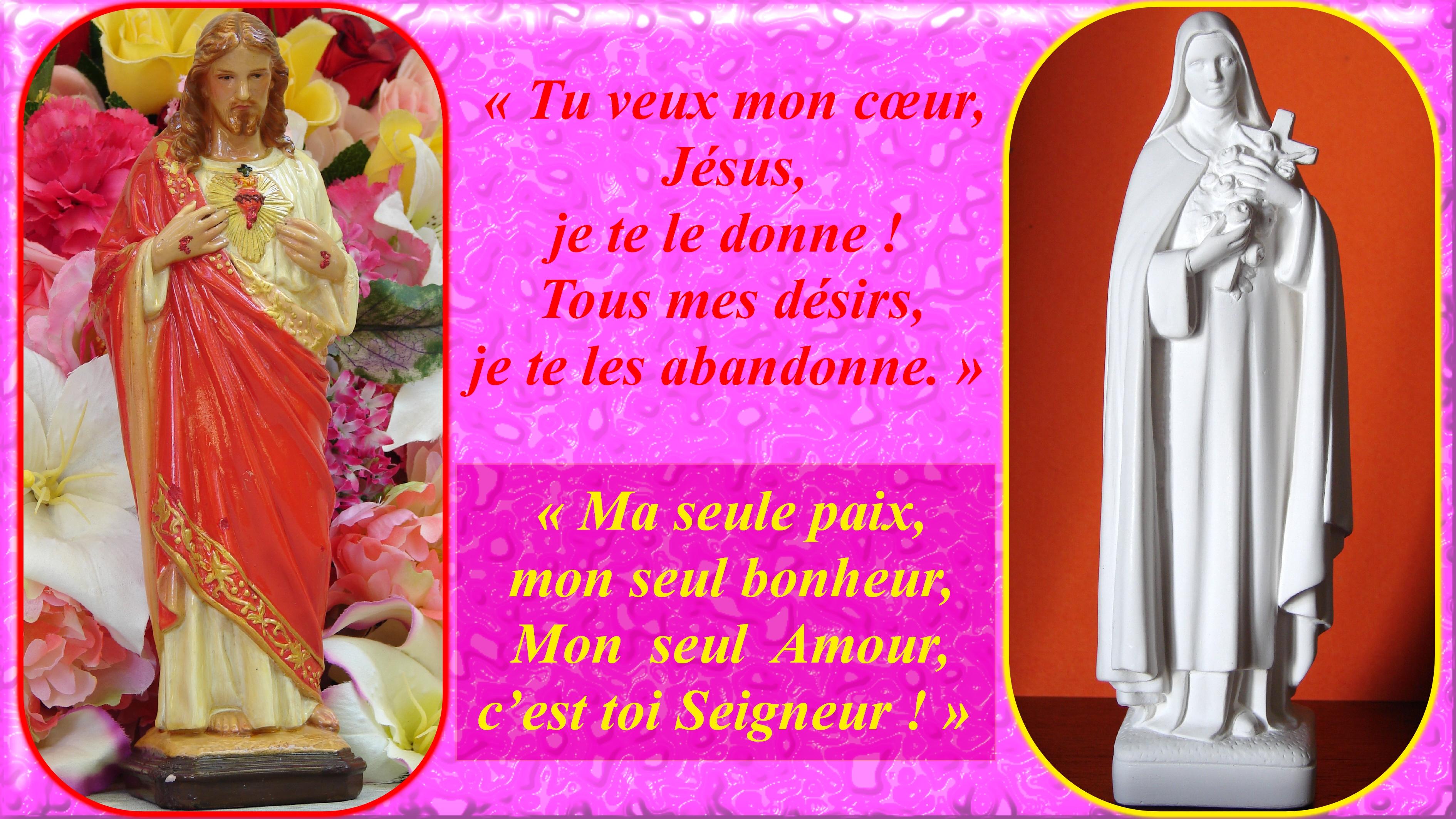 ACTE d'OFFRANDE à l'AMOUR MISÉRICORDIEUX du BON DIEU (Sainte Thérèse de l'Enfant-Jésus) Le-sacr--coeur-st...nt-j-sus-556a78e